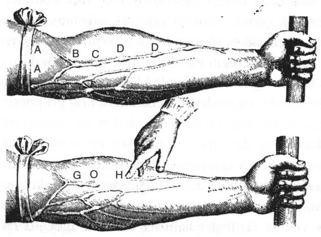 peripheral vasopressors